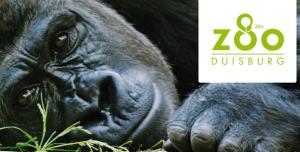 zoo_duisburg